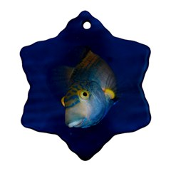Fish Blue Animal Water Nature Snowflake Ornament (2 Side)