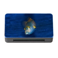 Fish Blue Animal Water Nature Memory Card Reader With Cf