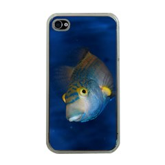 Fish Blue Animal Water Nature Apple Iphone 4 Case (clear)