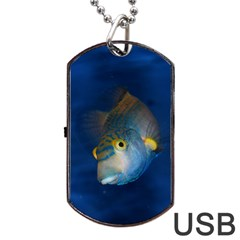 Fish Blue Animal Water Nature Dog Tag Usb Flash (two Sides)