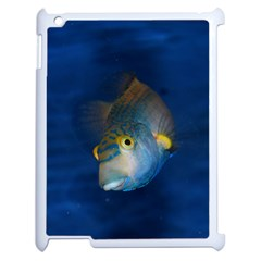 Fish Blue Animal Water Nature Apple Ipad 2 Case (white)