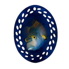 Fish Blue Animal Water Nature Oval Filigree Ornament (2 Side)