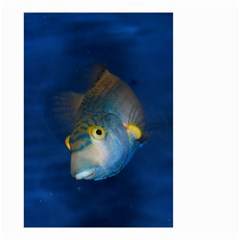 Fish Blue Animal Water Nature Small Garden Flag (two Sides)