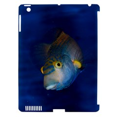Fish Blue Animal Water Nature Apple Ipad 3/4 Hardshell Case (compatible With Smart Cover)