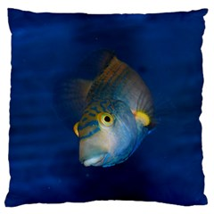 Fish Blue Animal Water Nature Large Cushion Case (two Sides)