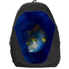 Fish Blue Animal Water Nature Backpack Bag