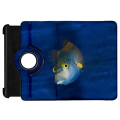 Fish Blue Animal Water Nature Kindle Fire Hd 7