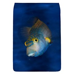 Fish Blue Animal Water Nature Flap Covers (s)