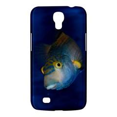 Fish Blue Animal Water Nature Samsung Galaxy Mega 6 3  I9200 Hardshell Case