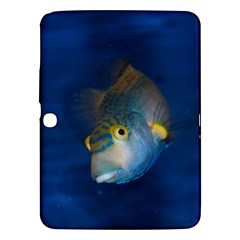 Fish Blue Animal Water Nature Samsung Galaxy Tab 3 (10 1 ) P5200 Hardshell Case