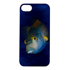 Fish Blue Animal Water Nature Apple Iphone 5s/ Se Hardshell Case