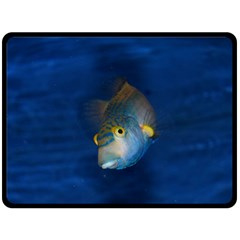 Fish Blue Animal Water Nature Double Sided Fleece Blanket (large)