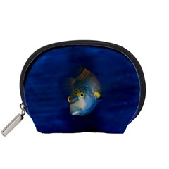Fish Blue Animal Water Nature Accessory Pouches (small)