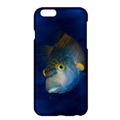 Fish Blue Animal Water Nature Apple Iphone 6 Plus/6s Plus Hardshell Case