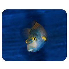 Fish Blue Animal Water Nature Double Sided Flano Blanket (medium)