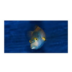 Fish Blue Animal Water Nature Satin Wrap