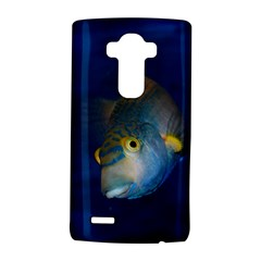 Fish Blue Animal Water Nature Lg G4 Hardshell Case