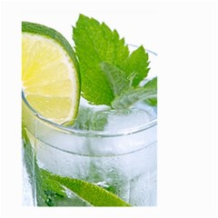 Cold Drink Lime Drink Cocktail Small Garden Flag (two Sides)