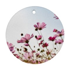 Flowers Plants Korea Nature Round Ornament (two Sides)