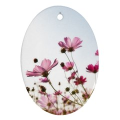 Flowers Plants Korea Nature Oval Ornament (two Sides)