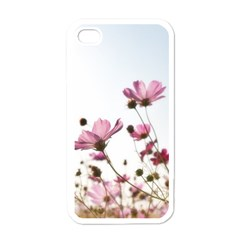 Flowers Plants Korea Nature Apple Iphone 4 Case (white)