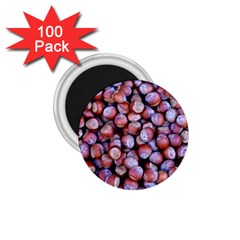 Hazelnuts Nuts Market Brown Nut 1 75  Magnets (100 Pack)