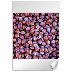 Hazelnuts Nuts Market Brown Nut Canvas 24  X 36