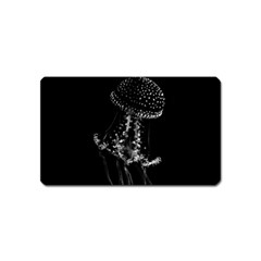 Jellyfish Underwater Sea Nature Magnet (name Card)