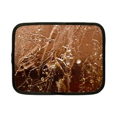 Ice Iced Structure Frozen Frost Netbook Case (small)