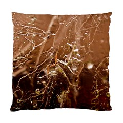 Ice Iced Structure Frozen Frost Standard Cushion Case (two Sides)