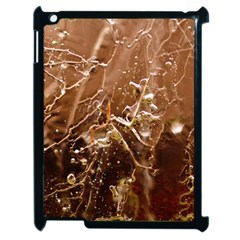 Ice Iced Structure Frozen Frost Apple Ipad 2 Case (black)
