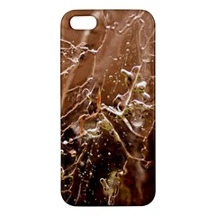 Ice Iced Structure Frozen Frost Iphone 5s/ Se Premium Hardshell Case
