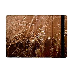 Ice Iced Structure Frozen Frost Ipad Mini 2 Flip Cases