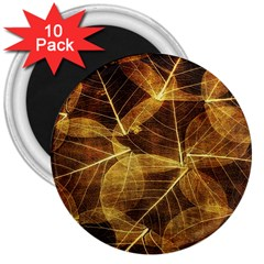 Leaves Autumn Texture Brown 3  Magnets (10 Pack)