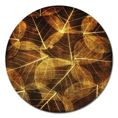 Leaves Autumn Texture Brown Magnet 5  (round)