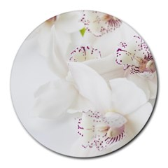 Orchids Flowers White Background Round Mousepads