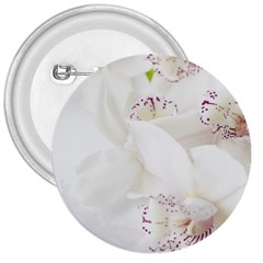 Orchids Flowers White Background 3  Buttons