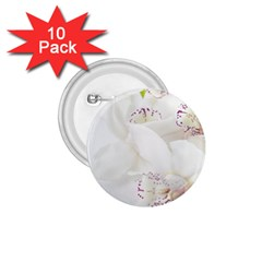Orchids Flowers White Background 1 75  Buttons (10 Pack)