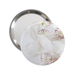 Orchids Flowers White Background 2 25  Handbag Mirrors