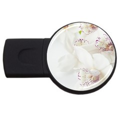 Orchids Flowers White Background USB Flash Drive Round (1 GB)