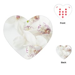 Orchids Flowers White Background Playing Cards (heart)