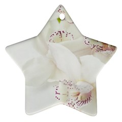 Orchids Flowers White Background Star Ornament (two Sides)