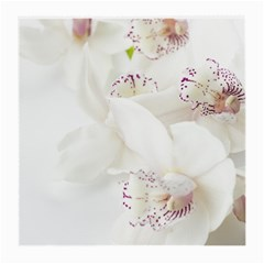 Orchids Flowers White Background Medium Glasses Cloth (2 Side)
