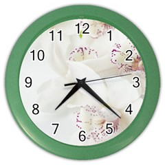 Orchids Flowers White Background Color Wall Clocks