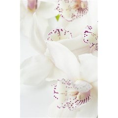 Orchids Flowers White Background 5 5  X 8 5  Notebooks