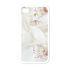 Orchids Flowers White Background Apple Iphone 4 Case (white)