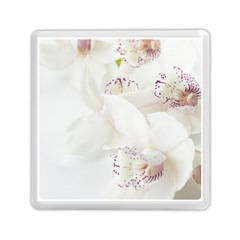 Orchids Flowers White Background Memory Card Reader (square)