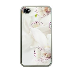 Orchids Flowers White Background Apple Iphone 4 Case (clear)