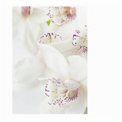 Orchids Flowers White Background Large Garden Flag (two Sides)