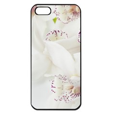 Orchids Flowers White Background Apple Iphone 5 Seamless Case (black)